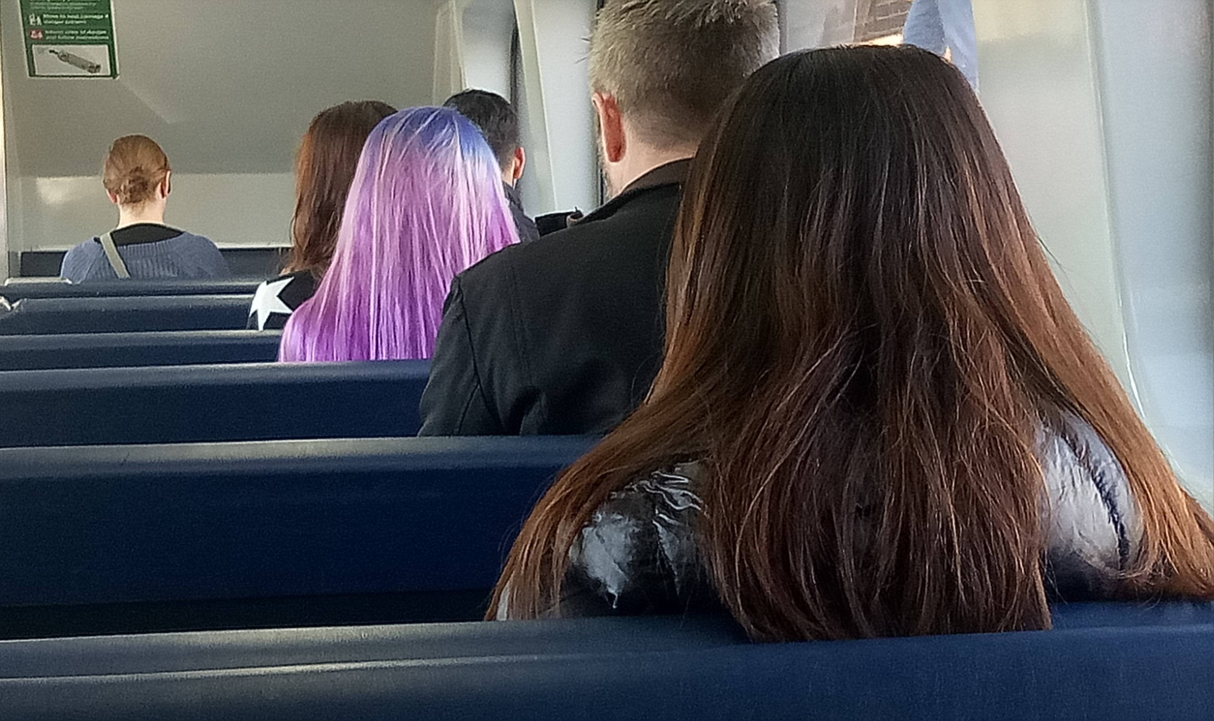 Purple Dyed Hair Blonde On Train