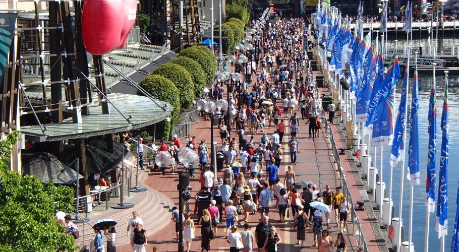 Sydney Harbor Crowds